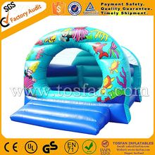 Inflatable jumping castles with prices inflatable moonwalks A1048