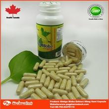 hot sell OEM brain benefits ginkgo biloba capsules
