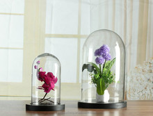 glass dome for flower decoration dome plate cover made in China