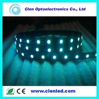 5m DC12V ws2812 addressable pixelled strip,30/60leds/m with 5050 smd rgb led chip;waterproof in tube