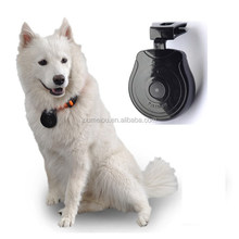 high quality mini digital best pet camera for your lovely pets