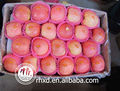 fresca de manzana las variedades de manzana