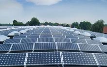polycrystalline Silicon Material 1MW australia solar panel system 300w 250w