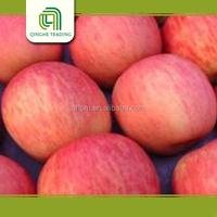 red apple, fuji apple laptop china