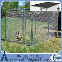 Hot dipped galvanized powder coating large outdoor popular excellent pet house/dog kennels