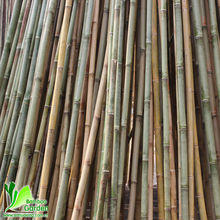 bamboo poles for sale seattle