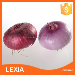 Hot sale ! Fresh Red Shallot Onion