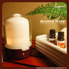2014 Hot selling Arometherapy Essential Oil Aroma Diffuser