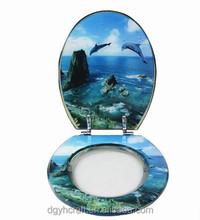 Decorative resin toilet seat