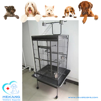 Elegant Paint-Drying Stainless Steel Bird Cage