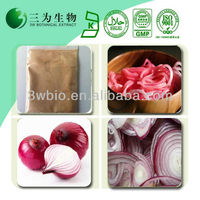 100% Pure Onion Extract Powder Quercetin