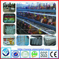 china manufacturer tanzania layer poultry farm chicken cage for sale/galvanized welded wire chicken cages