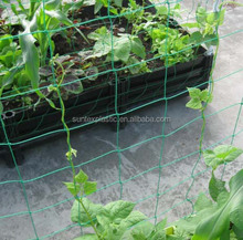 Selling high quality cucumber tomato bean pea plant support net/bop stretch net made in China