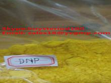 TJ-518 99% CAS No: 51-28-5 Steroids Powder 2,4-Dinitrophenolate / 2,4-Dinitrophenol / DNP For Safe Fat Loss