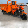 3 wheel trike/petrol motorcycle/200cc China triciclo reclinado/Trike