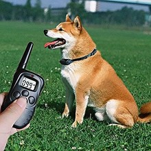 Rechargeable LCD Shock and Vibrate Remote Dog Training Collar