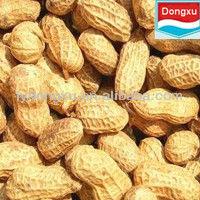 green peanuts in shell