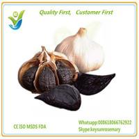 fresh garlic,garlic price in china 2015,garlic price of 2015