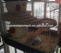 PVC Animal metal pet cages/cat cage