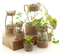 Wholesale Home Decoration vintage style hydroponics Glass Vase