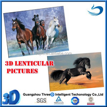 Lenticular plastic Home decorative 3D horse pictures