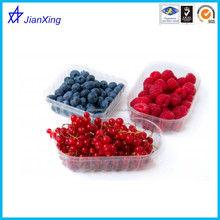 Hot new products for 2015 PP plastic fruit tray
