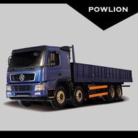 DY Cargo truck (CGC1311) 8x4 (270/290/310/336/340/375/380/420/430hp)