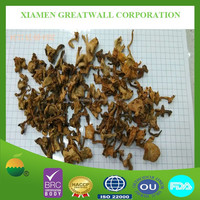 Wild dried chanterelle mushroom