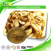 Wholesale 100% Natural High Quality Dong Quai Extract