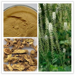 Black Cohosh P.E./Black Cohosh Extract Powder/Black Cohosh Extract/2.5%,15% Triterpenes