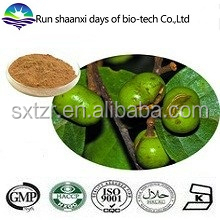Kosher 100% Natural Pygeum africanum extract