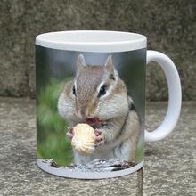 heat transfer photo / printing / logo on sublimation mugs