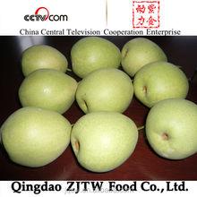 Golden Pear shandong pear export pear