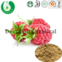 Plant Extract Organic Raspberry Extract Weight Loss Products