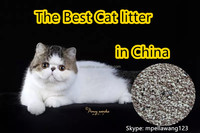 The Best Bentonite Cat litter in China ligh yellow white with activated carbon