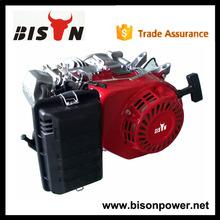 BISON(CHINA)Hot Sale Big Fuel Tank Popular Sale Gasoline Engine
