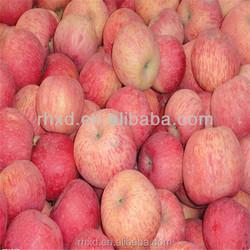 2015 royal gala apple/bulk fresh apples/New Crop 2015 Fresh Fuji Apple