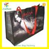 pp non-woven bag,laminated non-woven bag,non woven shopping bag factory
