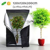 Eco-freindly Greenhouse Indoor Grow tent,Hydroponic Grow Tent