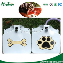 JF-008 new pet water dispenser,automatic dog water fountain