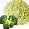 AD vegetables powder dehydrated broccoli powder