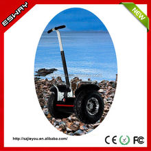 Shenzhen Ocam chariot 2014 the newest design Esway aquatic scooter for sale