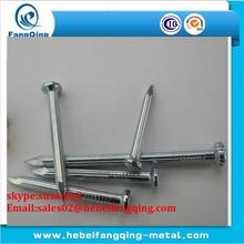 zinc coated 45# steel concrete nails 1 kg box