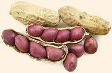Groundnut & Peanut