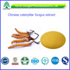 ISO&GMP Factory Supply cordyceps militaris Extract Cordyceps adenosine