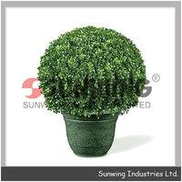 ornamental plants decorative topiary boxwood house decoration