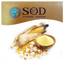 New products ensure powder sod yongli