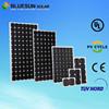 Bluesun brand cheap price poly 75w solar panel