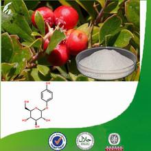 Bearberry Leaf Extract Alpha Arbutin Skin Whitening Cream for Black Skin