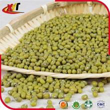 green mung beans(sprouting)